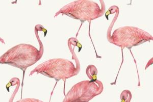 Tricot katoen stof, flamingo print, offwhite/roze. Q5547